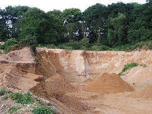 Rising Hill Pit, Letheringsett, is a Local Site (RIGS) designated for its geodiversity features. (© Tim Holt-Wilson)