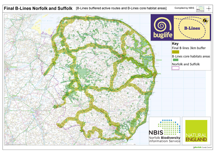 B-lines Norfolk and Suffolk map