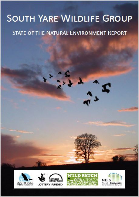 South Yare State of the Environment Report