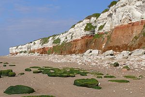 Hunstanton Cliffs SSSI, designated for its Cretaceous geology and cliff-nesting colony of fulmars (&copy;Mike Hurn)